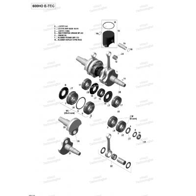 Коленвал, Поршни двигателя - 600HO E-TEC