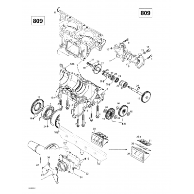 Crankcase, Reed Valve, Water Pump (809)