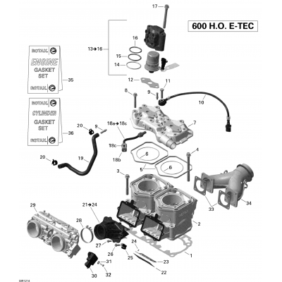 Cylinder And Injection System